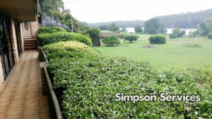 after hedge and bush trimming with view Simpson Services Longreach Garden Maintenance